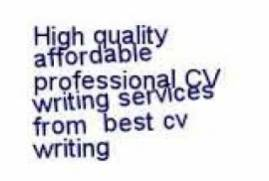 ex forces cv writing service